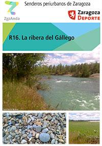 Ruta 16: La ribera del Gállego