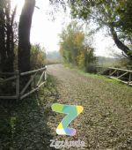 Ruta 4 ZaragozAnda: Camino natural del Ebro [ZGZ-Cartuja]