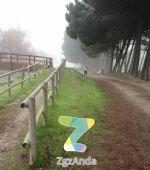 Ruta 5 ZaragozAnda: Canal Imperial hasta La Cartuja