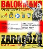 Campeonato Estatal de Balonmano Cadete Femenino. Sector D