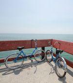Seis consejos para montar en bicicleta en familia este verano