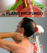 Automasaje para liberar la tensión de cuello, cervicales y de trapecios