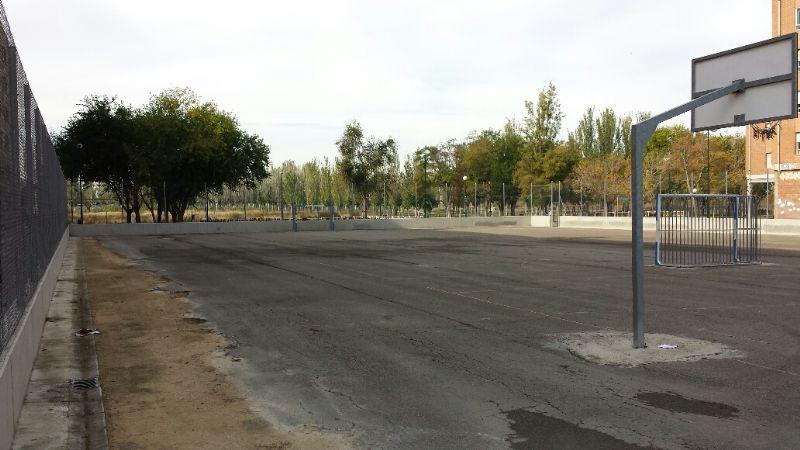 Desbroce, sulfatado y limpieza de pista deportiva [Fecha: 08/11/2013]