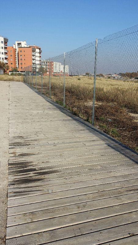 Tratamiento herbicida en la zona de pasillo de tablas de madera y barnizado de madera. [Fecha: 29/11/2013]