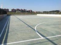 Futbol sala/balonmano El Coloso [Fecha: 08/05/2015]