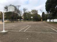 Campo completo de baloncesto [Fecha: 05/04/2019]