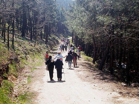 Senderismo para mayores de 65 años: Ciclo Primavera 2011