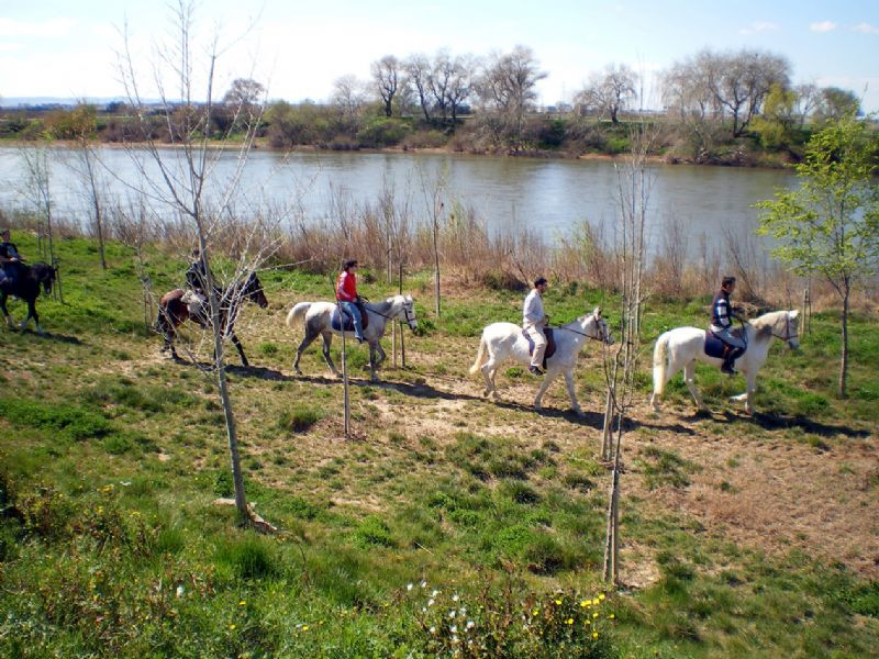 El Parque del Agua estrena rutas a caballo y de canoa