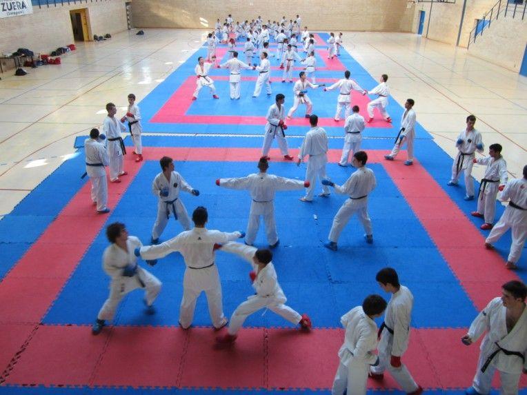 Centro de tecnificación deportiva de la Federación Aragonesa de Karate