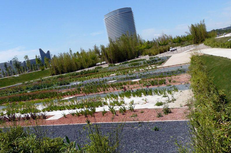 Zaragoza compite con otras 18 ciudades europeas para convertirse en Capital Verde de Europa en 2014