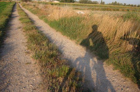 Interesante web que ofrece rutas urbanas y periurbanas en bicicleta por Zaragoza
