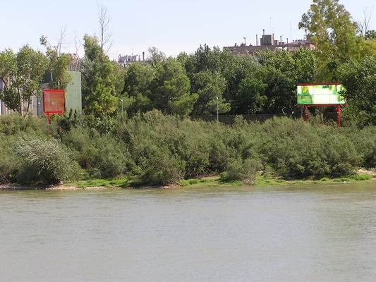 Descubre la naturaleza del Ebro a su paso por nuestra ciudad