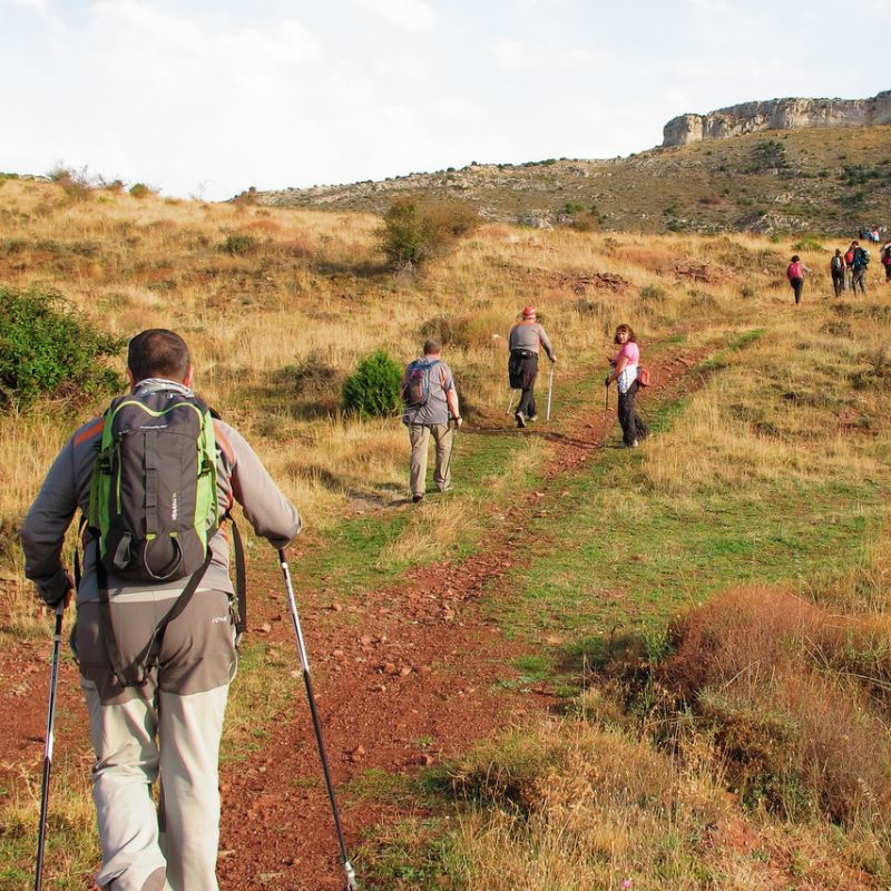 Los beneficios del Nordic Walking