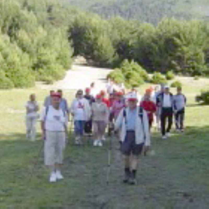 Dar 6.000 pasos al día protege a los adultos de la artrosis de rodilla