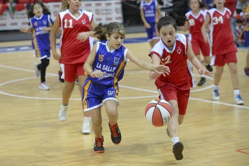 Galería fotográfica del «Día del Minibasket 2014»
