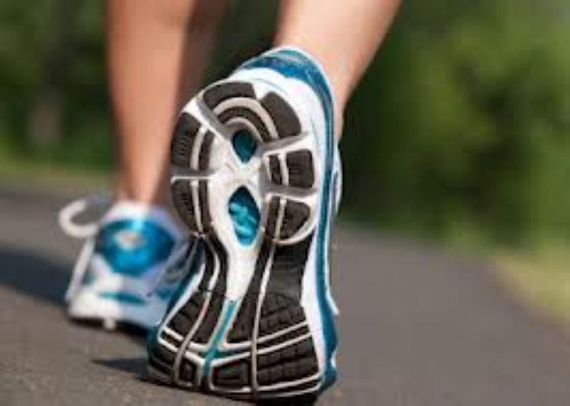 Descubre los beneficios de un buen paseo