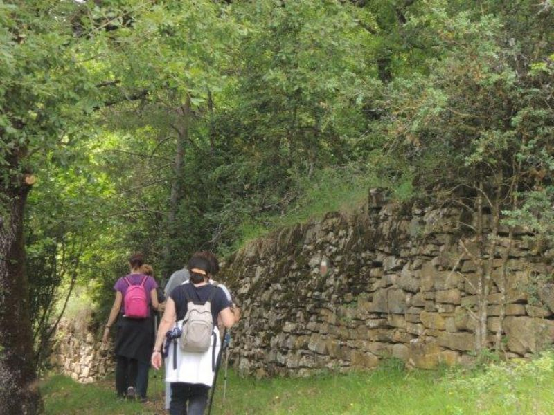 Acondicionamiento del Sendero Turístico de Aragón GR 15