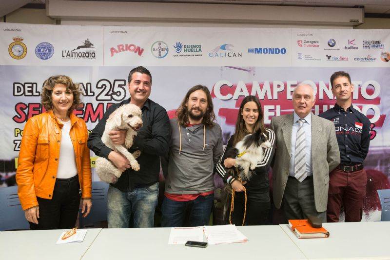 Zaragoza acogerá el próximo Mundial de Agility