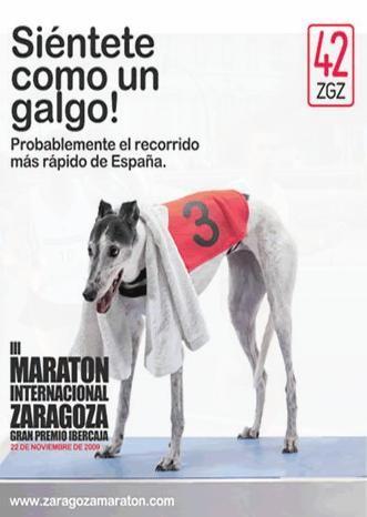 Rueda de prensa «III Maratón Internacional Zaragoza»