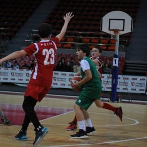 Galerías de fotos del «Día del Minibasket 2019»