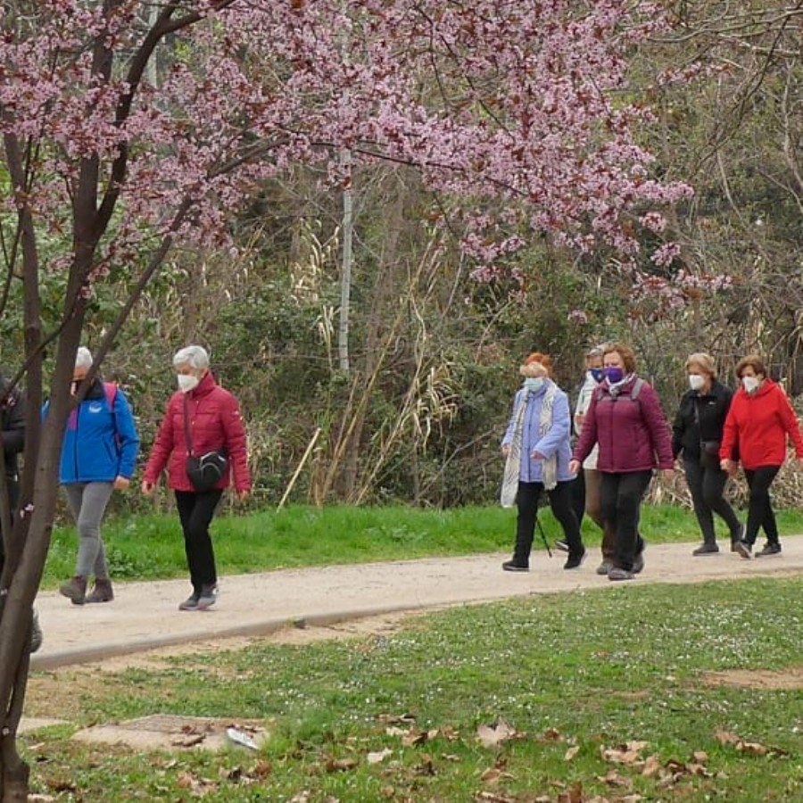 Quedadas activas para caminar dirigidas a mayores de 55 años