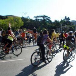 Zaragoza será la ciudad pionera en la puesta en marcha del Registro Nacional de Bicicletas