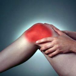 Artrosis y regeneraci�n del cart�lago